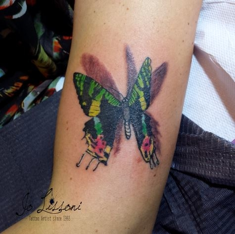 tattoo 3d natura butterfly 3d tattoo jo lissoni tattoo 1 1000x1000 - TATTOO 3D